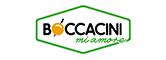 Boccacini